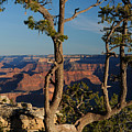 Mather Point South Rim Grand Canyon by Cyril Furlan