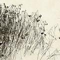 Matsuo Basho Remembering by Alexander Svetlov