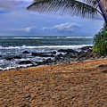 Maui Beach by Jon Berghoff