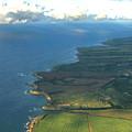 Maui Coastline by Nicole I Hamilton