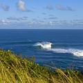 Maui, Jaws Landscape by Ron Dahlquist - Printscapes