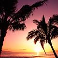 Maui, Kaanapali Beach by Carl Shaneff - Printscapes