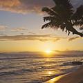 Maui, Kaanapali Beach by Greg Vaughn - Printscapes