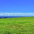 Maui Land Sea Sky by Frank DiMarco