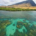 Maui Landscape by Ron Dahlquist - Printscapes