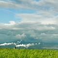 Maui Landscape by Art Spectrum