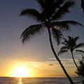 Maui Sunset by Diane Barrett