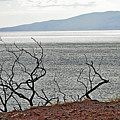 Maui's View Of Lanai by Robert Meyers-Lussier