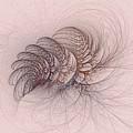 Mauviteer Ferns by Doug Morgan