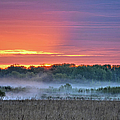 May Ground Fog by Bonfire Photography