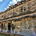 Mayan Graffiti  by Douglas Barnard