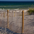 Mayflower Beach by Susan Cole Kelly