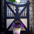 Maymont Gate by Tina Meador