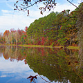 Mayor's Pond, Autumn, #7 by Gregory Schultz