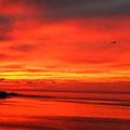 Mazatlan Sunset by Allison Jones