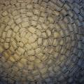Maze by Susanna Shap