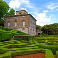 Mazed Garden by Valentino Visentini