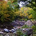 Mcarthur Bridge Over The Roaring Branch by Mark Schiffner