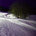 Mccauley Evening Snowscape by David Patterson