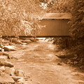 Mcconnells Mill Covered Bridge Sepia by Lisa Wooten