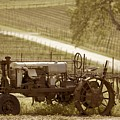 Mccormick Deering Tractor In Sepia by Brooke Roby