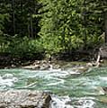 Mcdonald Creek Panorama by Teresa Wilson