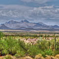 $250 -16x20 Canvas - Mcdowell Mountains 2830- 072911-3  by Tam Ryan