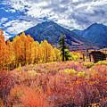 Mcgee Creek Majesty by Lynn Bauer