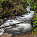 Mchugh Creek by Erika Fawcett