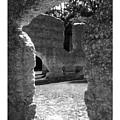 Mcintosh Sugar Mill Tabby Ruins  by Rebecca Stephens