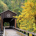 Mckee Bridge In Fall by Steven Clark