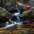 Mckormick's Creek State Park by Walt Sterneman