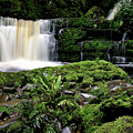 Mclean Falls In Southland New Zealand by Mark Duffy