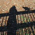 Me And My Shadow by Ali Baucom