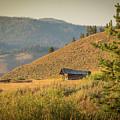 Meadow Cabin by Mark Mille