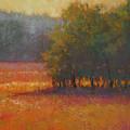 Meadow Glow by Susan Williamson