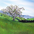 Meadow In Early March by Laura Iverson