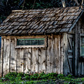 Meadow Shelter by Alan Hart