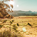 Meadows And Mountains by Jorgo Photography - Wall Art Gallery