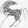 Mechanical Horse by Victoria  Shea