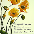Meconopsis  Poem by Karin  Dawn Kelshall- Best
