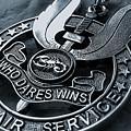 Medal by Bert Mailer