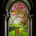 Medieval Abbey In Irish Spring by James Truett