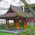 Meditation Pagoda by Maro Kentros