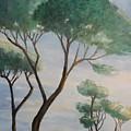 Mediterranean Pines by Maria Karalyos