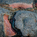 Medium Rare by Kathleen Scanlan