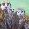 Meerkat Family by Sue Linton