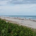 Melbourne Beach Florida November View by JG Thompson