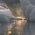 Melting Ice by Tim Grams