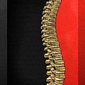 Memento Mori - Gold Human Backbone Over Black And Red Canvas by Serge Averbukh